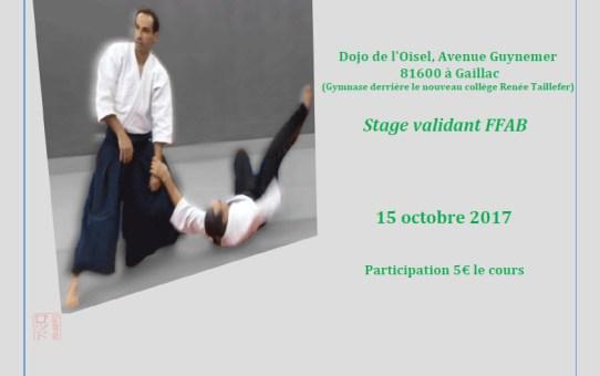 Stage GHAAN à Gaillac 15 Octobre 2017