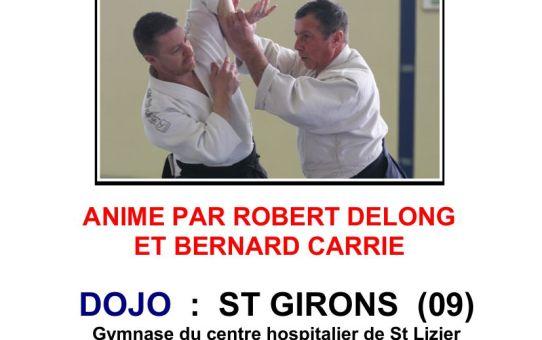 Stage Aïkido - Saint-Girons