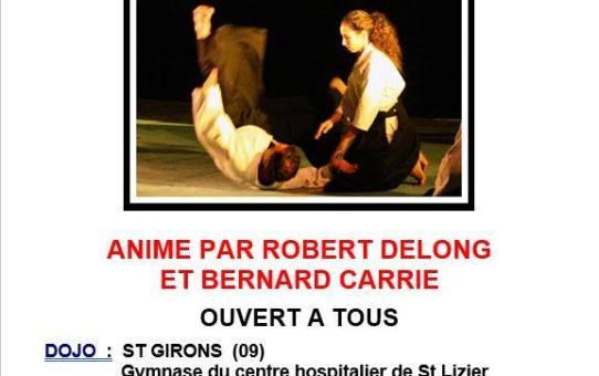 16 Décembre Stage à Saint-Girons - Animé par Robert Delong et Bernard Carrié