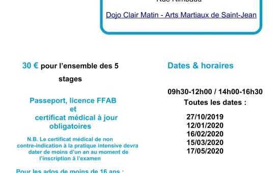 Dimanche 16 février MES 1er dan - C. Serpaud 4ème dan - à Saint-Jean