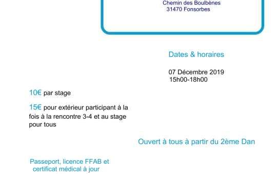 7 Décembre 2019 - Rencontres 3ème et 4ème Dan animées par Jean-François Fabre 5ème dan à Fonsorbes