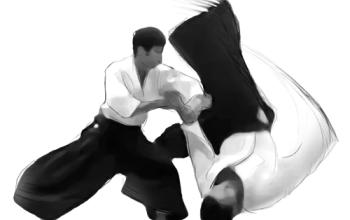 Aikido-Training findet wieder statt