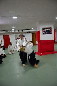 Aikido Beograd Seminar Pascal  03