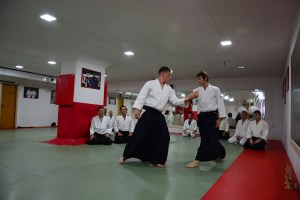 Aikido Beograd Seminar Pascal  04