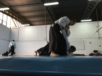 Aikido Aikikai San Vicente - Alicante - 2015, noviembre - IMG_0721