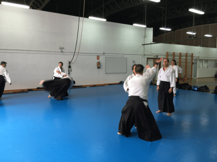 Aikido Aikikai San Vicente - Alicante - 2015, noviembre - IMG_1429
