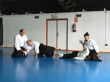 Aikido Aikikai San Vicente - Alicante - 2015, noviembre - IMG_9306