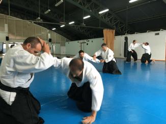 Aikido Aikikai San Vicente - Alicante - 2015, noviembre - IMG_9334