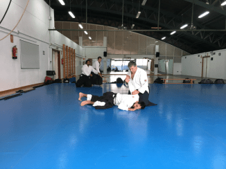 Aikido Aikikai San Vicente - Alicante - 2015, noviembre - IMG_9337