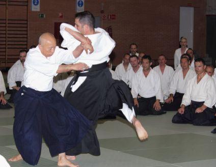 Hayato Osawa Shihan, Madrid 2014 - IMG_1393_retoc&rec