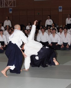 Hayato Osawa Shihan, Madrid 2014 - IMG_1658_retoc