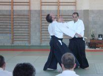 Curso Nacional de Aikido en Alicante, Tomás Sánchez y Roberto Sánchez, noviembre 2015 (Tachi Dori)