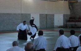 Curso Nacional de Aikido en Alicante, Tomás Sánchez y Roberto Sánchez, noviembre 2015 (Kokyu Tomás Sánchez)