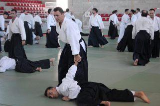 Curso Nacional de Aikido en Alicante, Tomás Sánchez y Roberto Sánchez, noviembre 2015 (Roberto Sánchez y Bruno Balague)