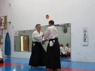 Curso Aikido AETAIKI Aikikai Alcoy Alicante - David Sánchez y Ángel L.Martínez - Comisión de Enseñanza AETAIKI - 0006