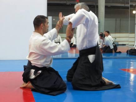 Curso Aikido AETAIKI Aikikai Alcoy Alicante - David Sánchez y Ángel L.Martínez - Comisión de Enseñanza AETAIKI - 0011