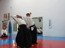 Curso Aikido AETAIKI Aikikai Alcoy Alicante - David Sánchez y Ángel L.Martínez - Comisión de Enseñanza AETAIKI - 0016