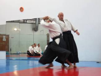 Curso Aikido AETAIKI Aikikai Alcoy Alicante - David Sánchez y Ángel L.Martínez - Comisión de Enseñanza AETAIKI - 0020