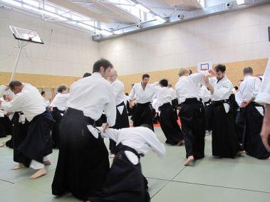 seminar_u_francuskoj_aikido_friends_serbia_beograd2