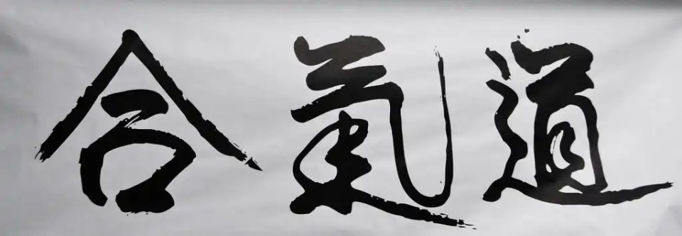 Aikido Kanji, Aiki No Kokoro Boves, Scuola di Aikido Cuneo