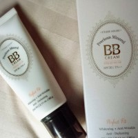 [Review] Etude House Precious Mineral Perfect-Fit BB Cream