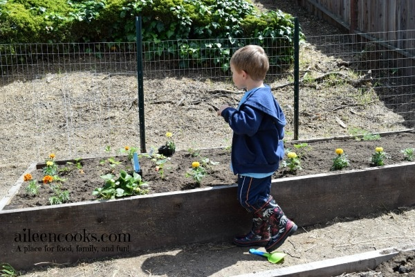 9 Reasons to Garden With Kids from aileencooks.com