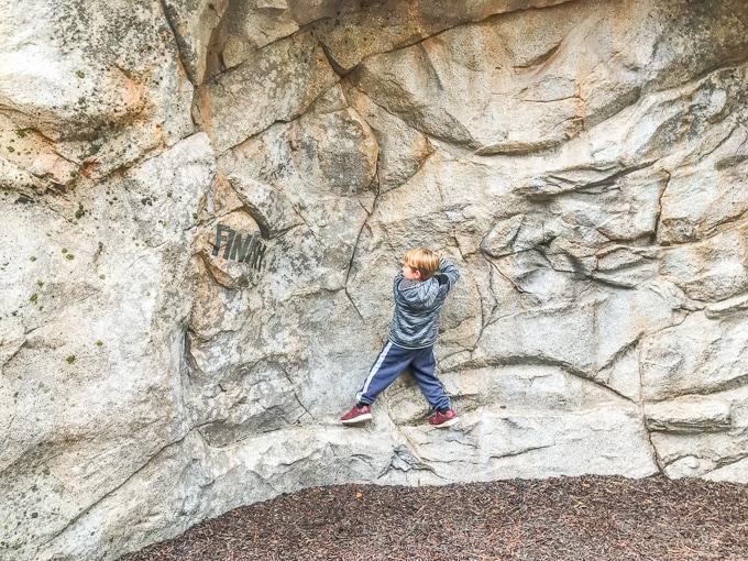 A boy climbing on the Redwood Creek Challenge Trail rock wall.