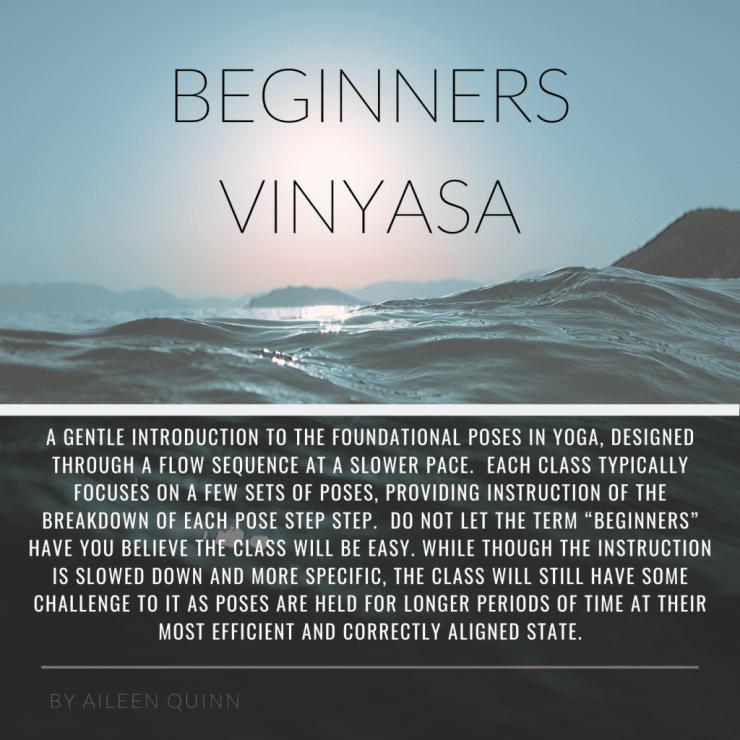 Beginners Vinyasa