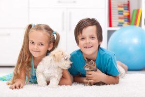 çocuklara hayvan sevgisi