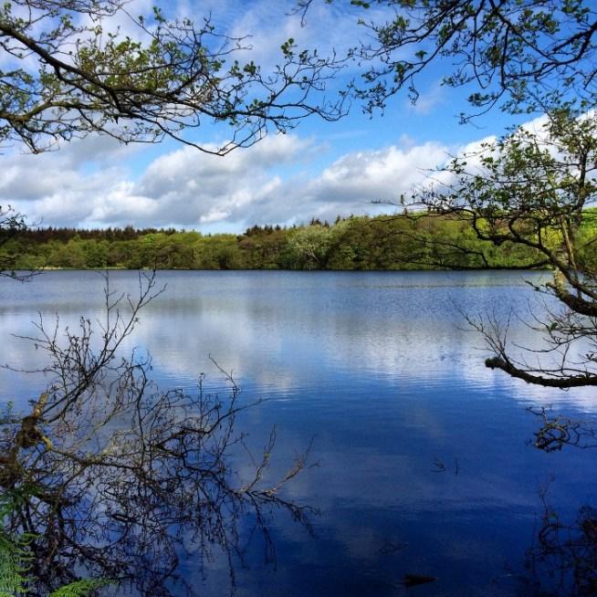 blue loch