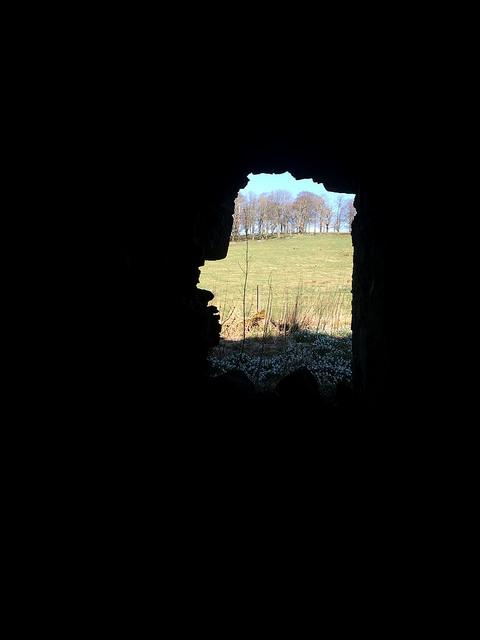 Gight Castle window