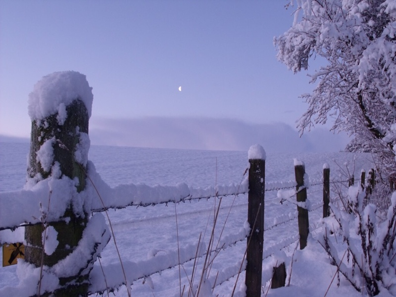 snowy Scottish scene