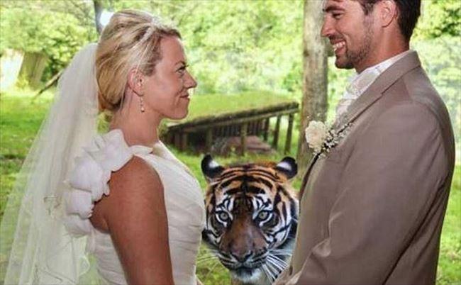 嫌な結婚式15