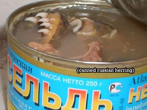 中々お目にかかれない珍しい変わりもの缶詰(画像)