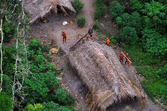 アマゾンの熱帯雨林について知っておきたいこと(雑学)
