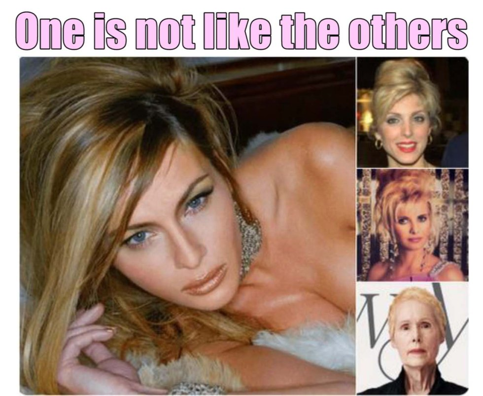 trump wives comparison