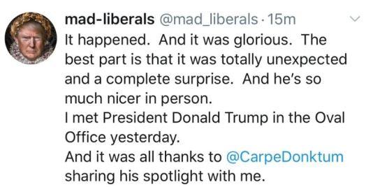 mad liberal tweet.JPG