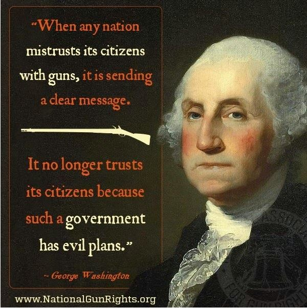 gun control second amendment.JPG