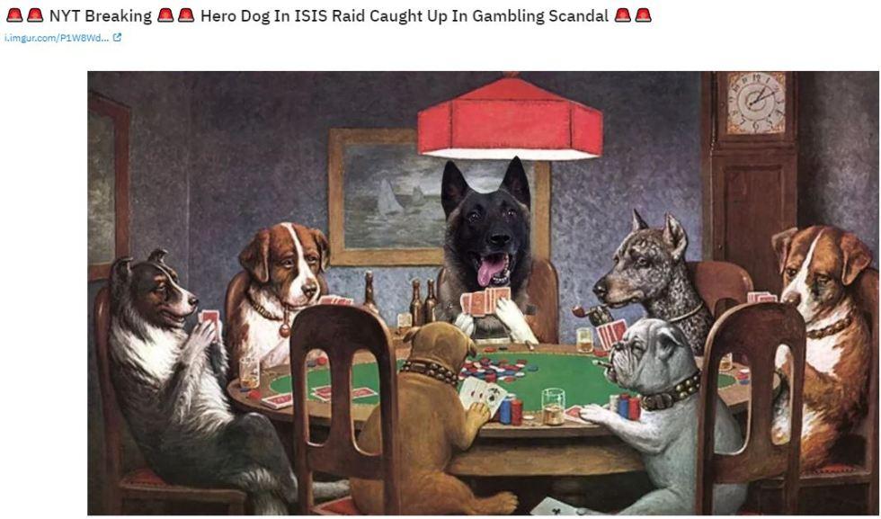 dog poker.JPG