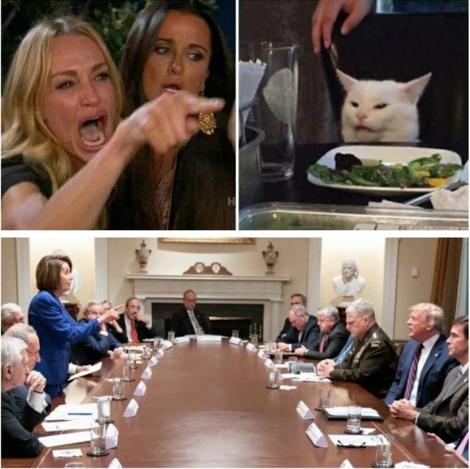 white house meeting pelosi cat.JPG