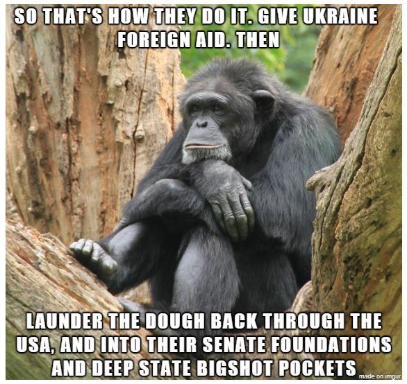 gorilla ukraine