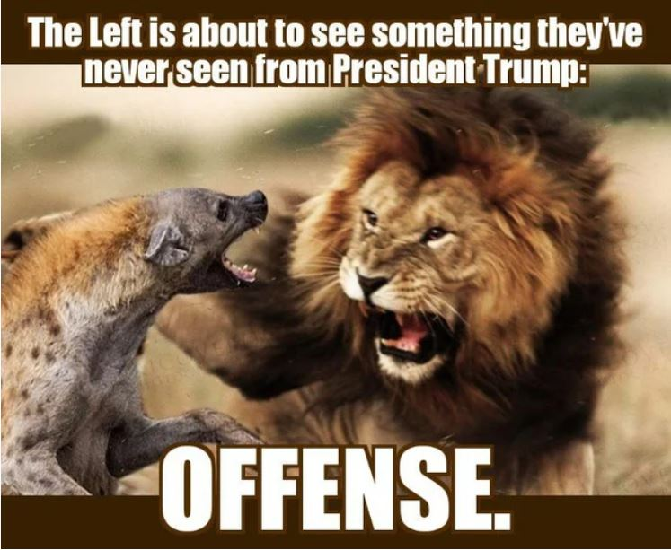 trump offense lion.JPG