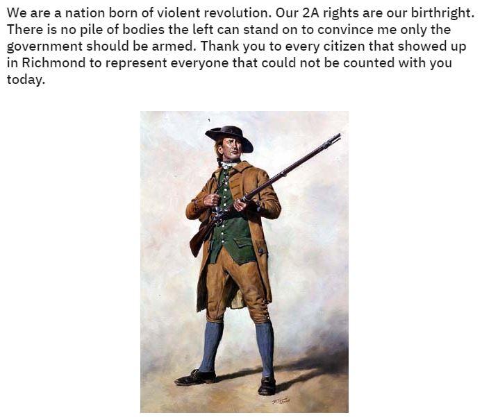 virginia gun control