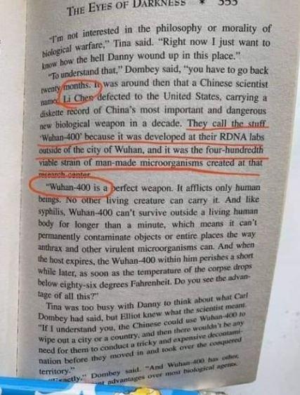 dean koontz book wuhan