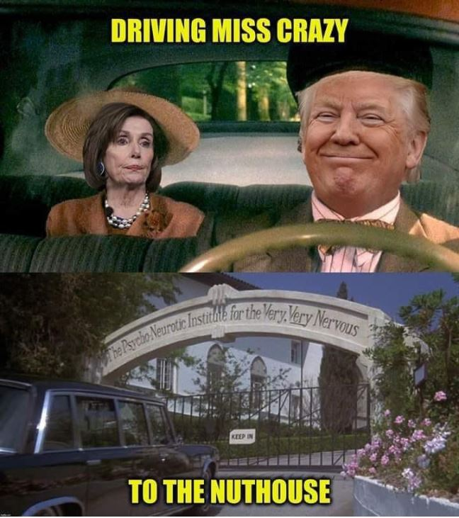 pelosi trump driving