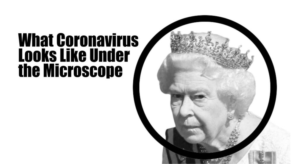 queen microscope coronavirus