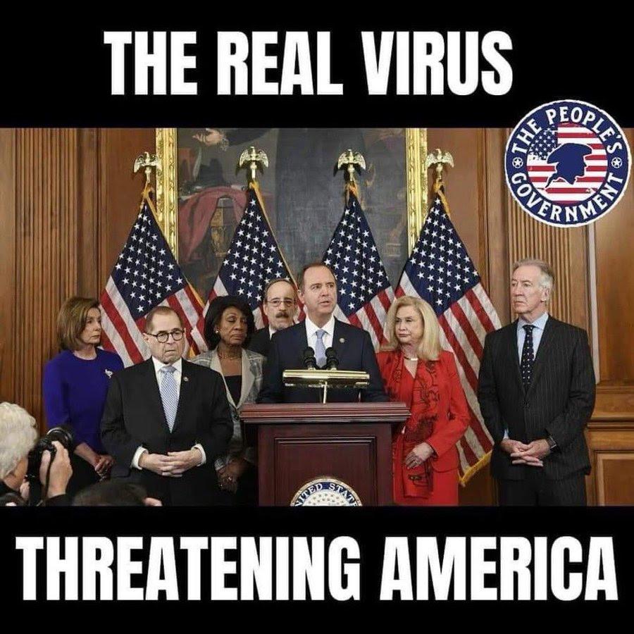 democrat virus