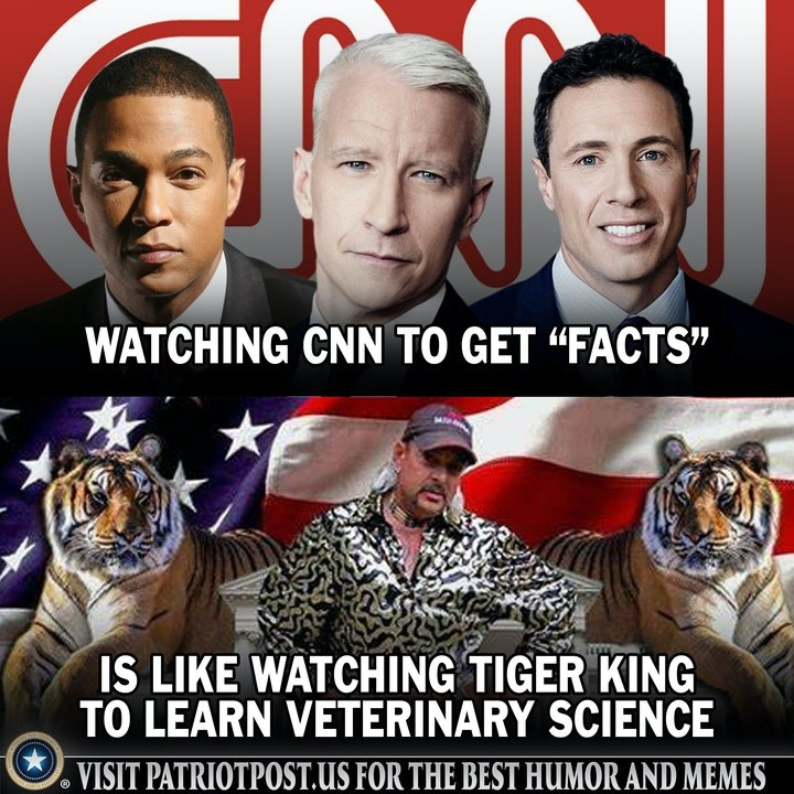 cnn fake news tiger king