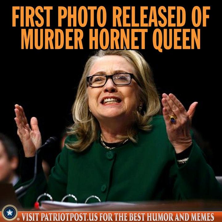 hillary clinton murder hornet