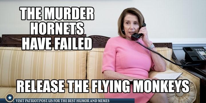 murder hornets pelosi